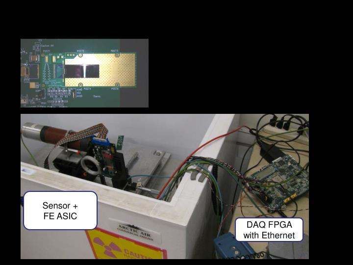 Sensor +