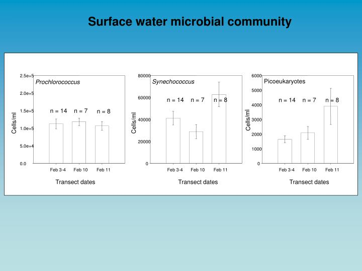 Surface water microbial community