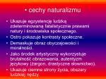 cechy naturalizmu