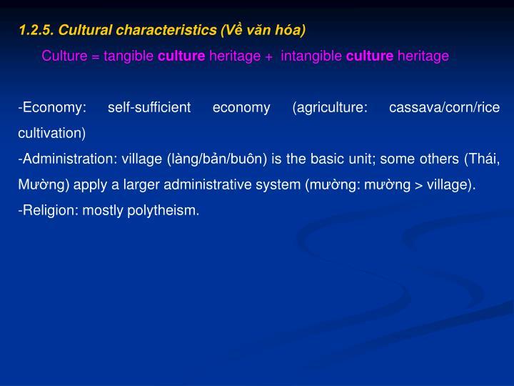 1.2.5. Cultural characteristics (Về văn hóa)