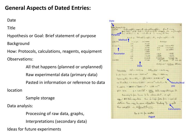 General Aspects of Dated Entries: