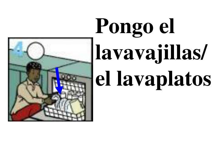 Pongo el lavavajillas/ el lavaplatos
