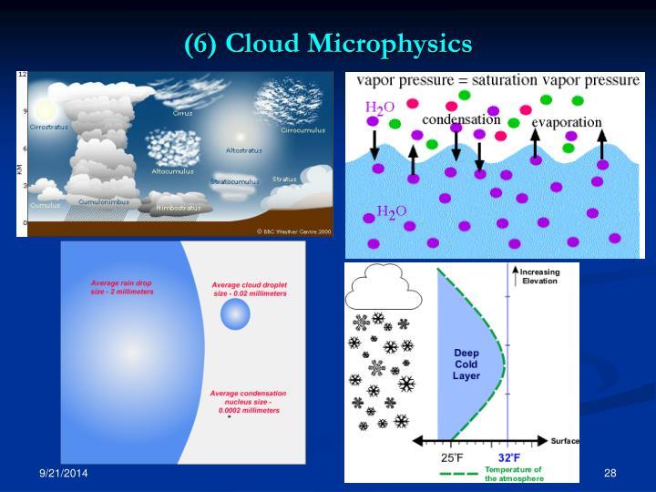 (6) Cloud Microphysics