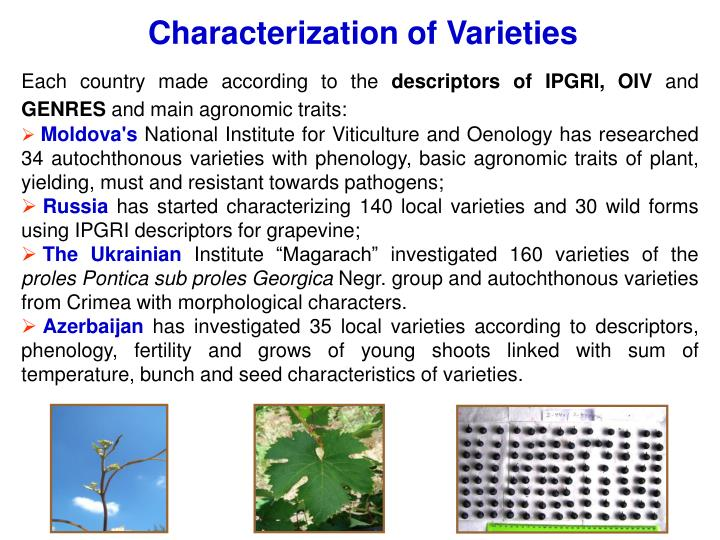 Characterization of Varieties