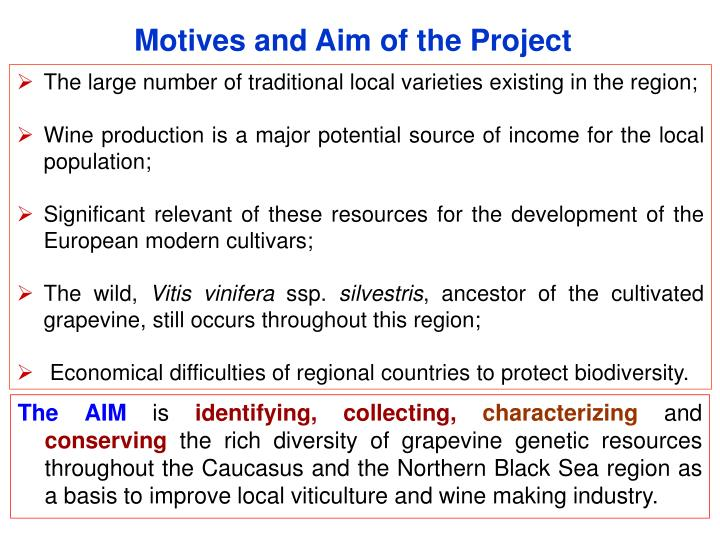 Motives and Aim of the Project