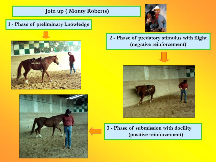Join up ( Monty Roberts)