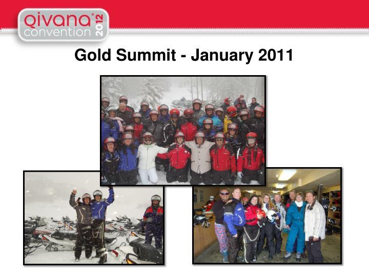 Gold Summit - January 2011