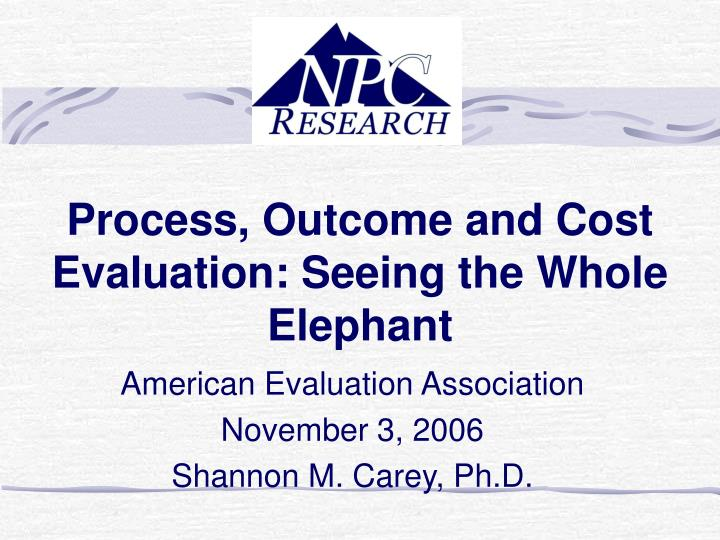 Process outcome and cost evaluation seeing the whole elephant