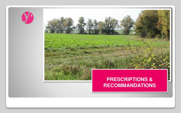 PRESCRIPTIONS & RECOMMANDATIONS