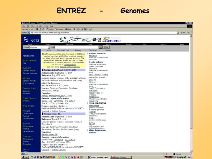 ENTREZ-Genomes