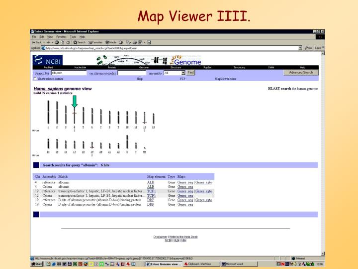 Map Viewer IIII.