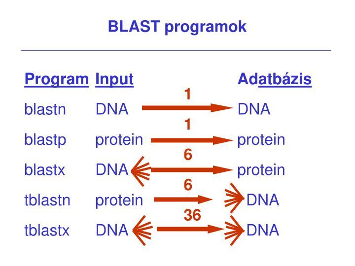 BLAST programok
