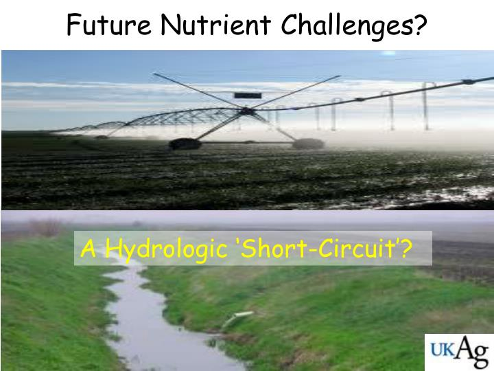 Future Nutrient Challenges?