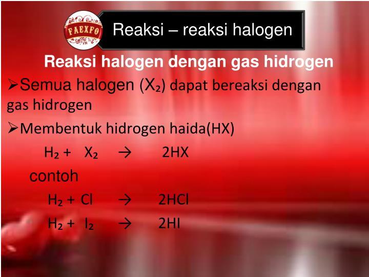 Reaksi halogen dengan gas hidrogen
