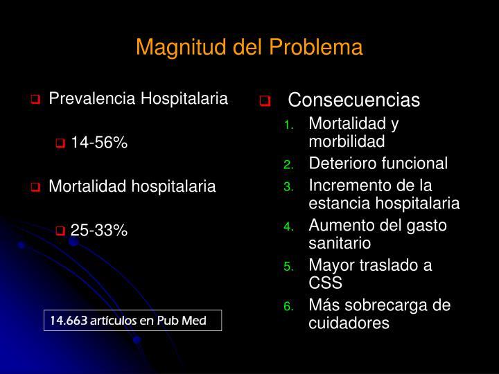 Prevalencia Hospitalaria