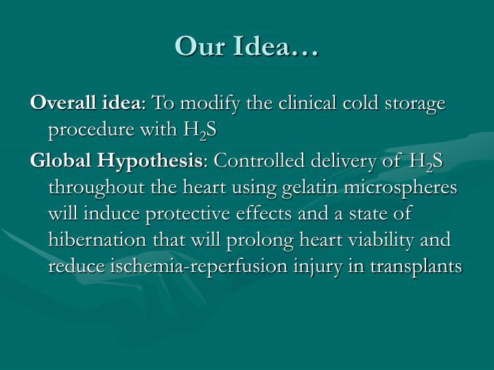 Our Idea…