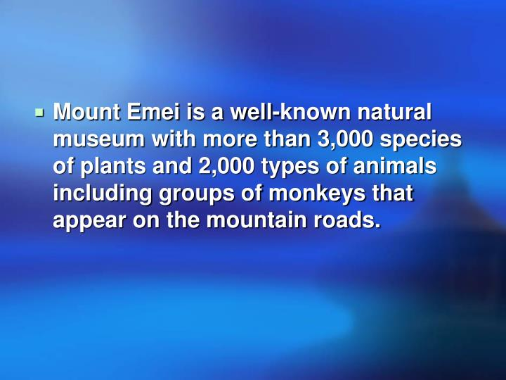 Mount Emei is a well-known natural museum with more than 3,000 species of plants and 2,000 types of animals including groups of monkeys that appear on the mountain roads.