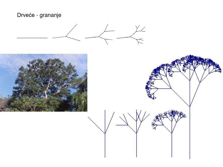 Drveće - grananje