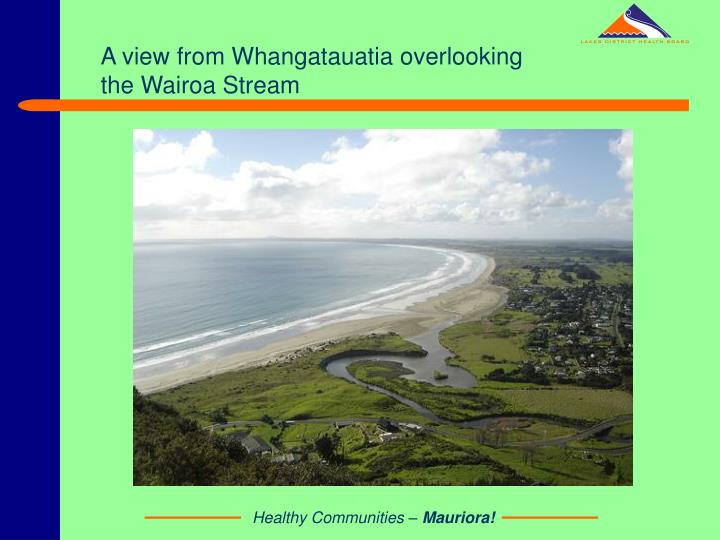 A view from Whangatauatia overlooking the Wairoa Stream