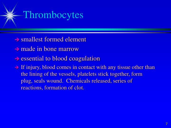 Thrombocytes