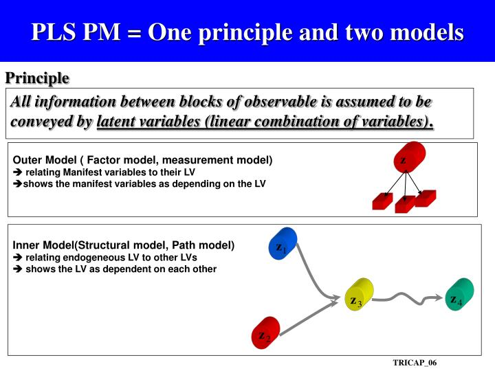PLS PM = One principle and two models