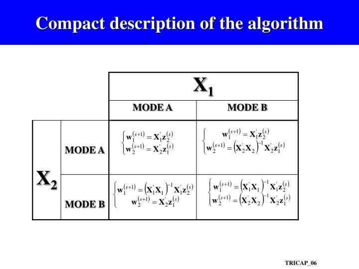 Compact description of the algorithm