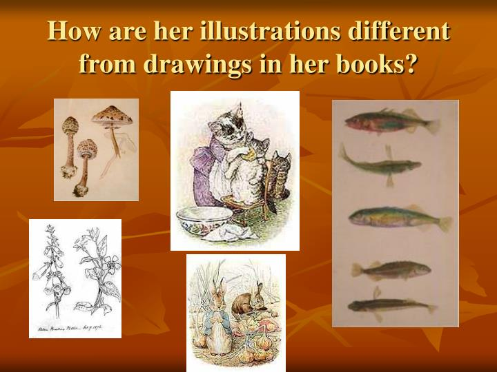 How are her illustrations different from drawings in her books?