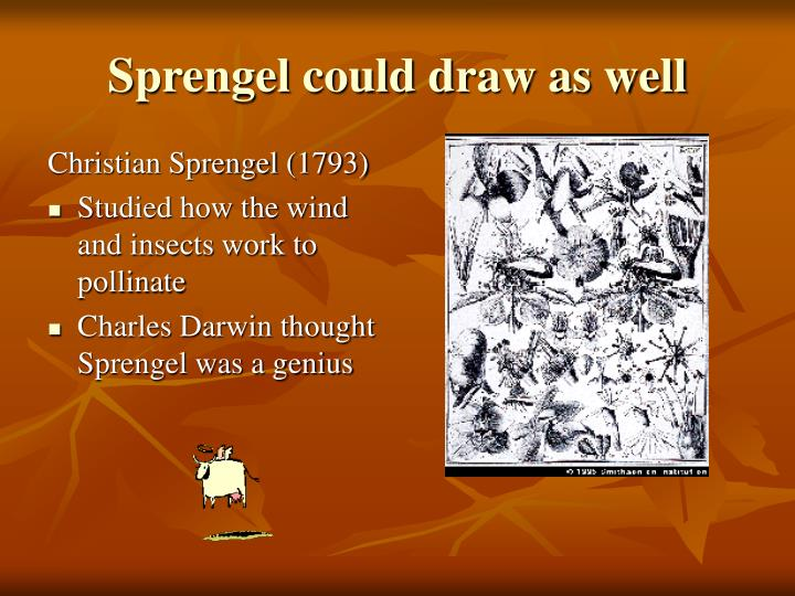 Sprengel could draw as well