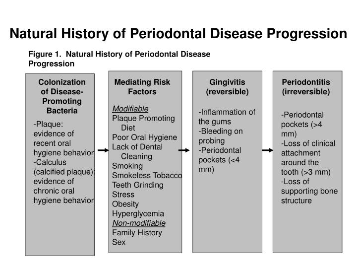 Figure 1.  Natural History of Periodontal Disease Progression