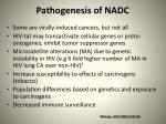 pathogenesis of nadc