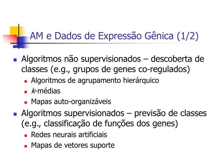 AM e Dados de Expressão Gênica (1/2)