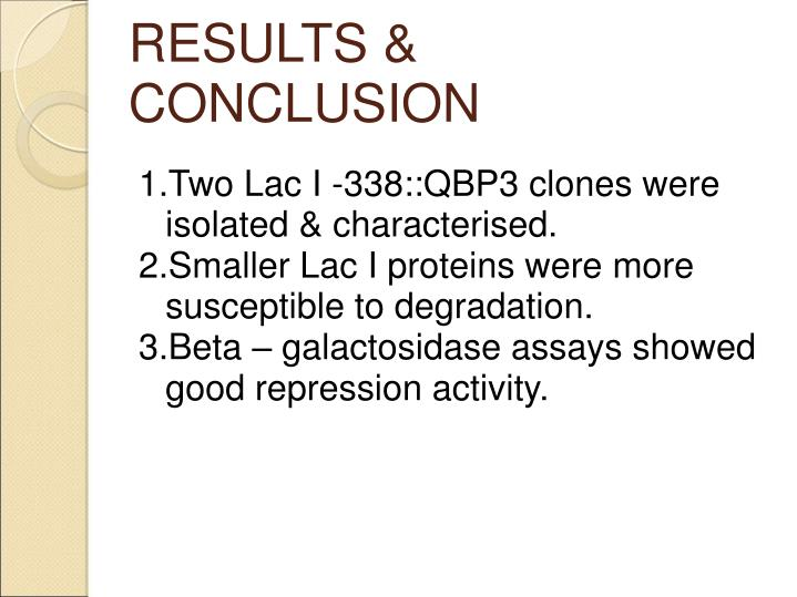 RESULTS & CONCLUSION