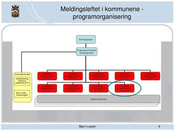 Meldingsløftet i kommunene - programorganisering