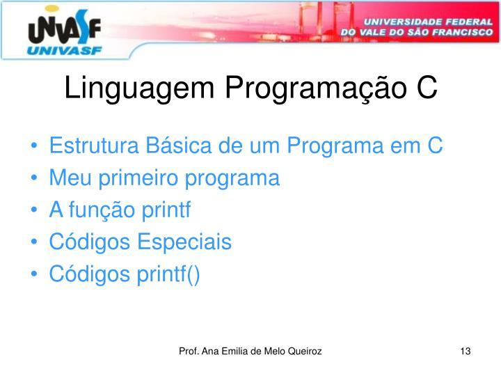 Linguagem Programação C