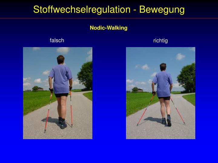Stoffwechselregulation - Bewegung