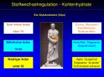 stoffwechselregulation kohlenhydrate1