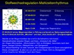 stoffwechselregulation mahlzeitenrhythmus