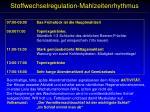 stoffwechselregulation mahlzeitenrhythmus2