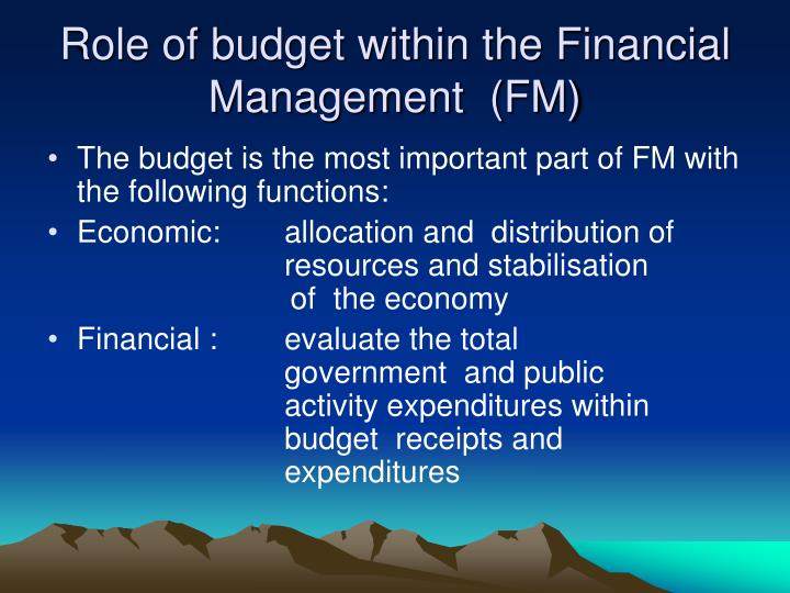 Role of budget within the Financial Management  (FM)