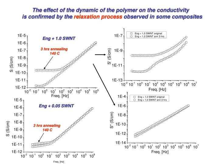 The effect of the dynamic of the polymer on the conductivity