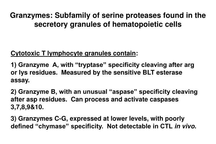 Granzymes: Subfamily of serine proteases found in the secretory granules of hematopoietic cells