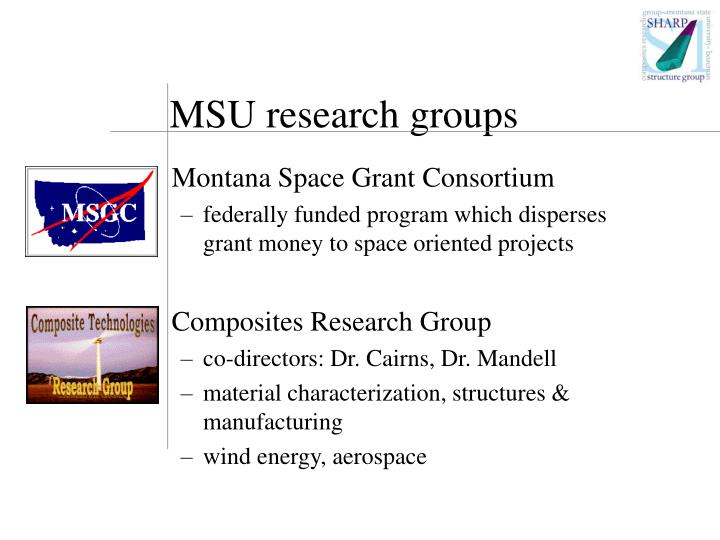 MSU research groups