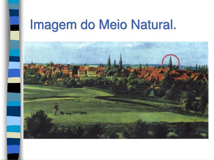Imagem do Meio Natural.