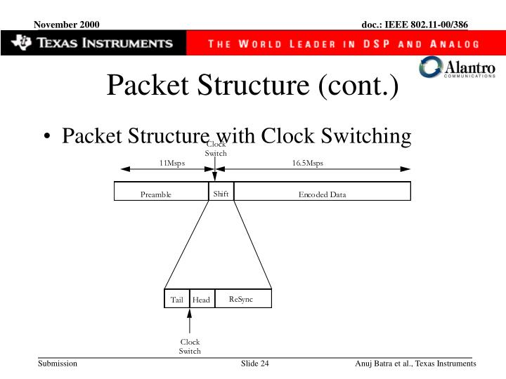 Packet Structure (cont.)
