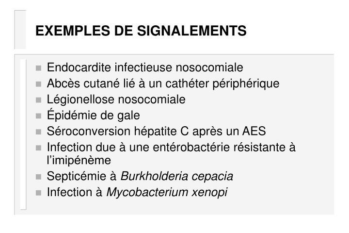 EXEMPLES DE SIGNALEMENTS