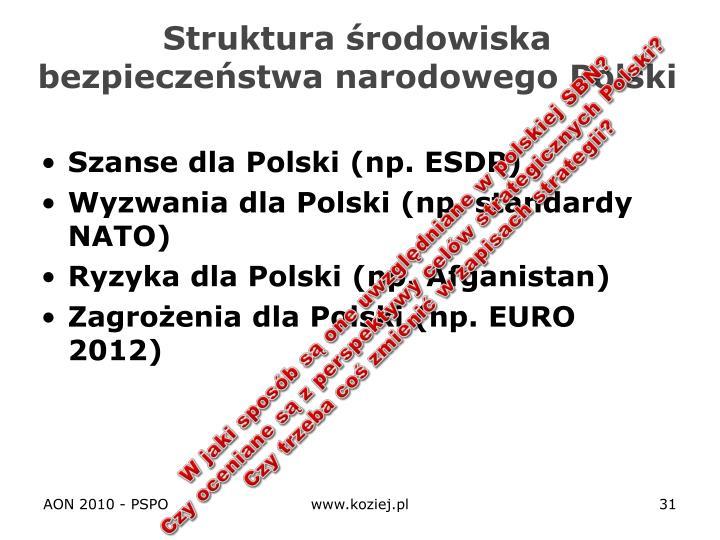 Struktura środowiska bezpieczeństwa narodowego Polski