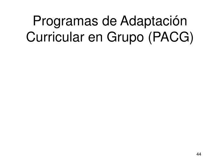 Programas de Adaptación Curricular en Grupo (PACG)