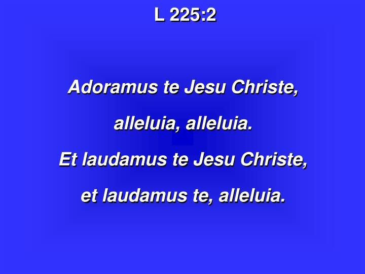 L 225:
