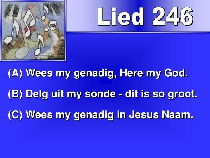 Lied 246