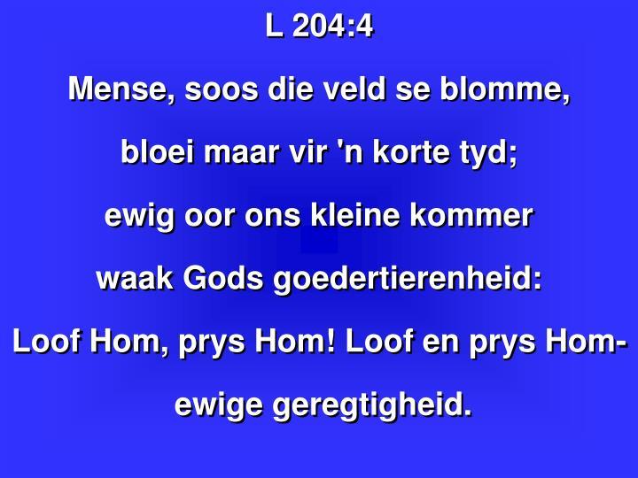 L 204: